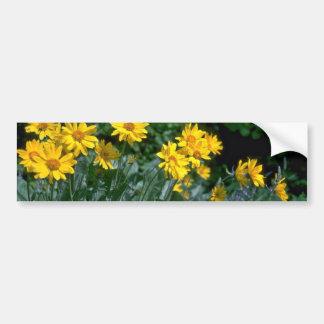 Flores cariñosas de Sun Pegatina De Parachoque