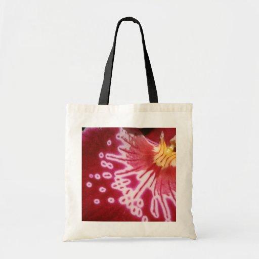 Flores carmesís rojas del acercamiento bolsas