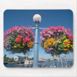 Flores colgantes rosadas, flores de Victoria Alfombrillas De Ratones