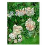 Flores color de rosa rosadas de Van Gogh, todavía Postal