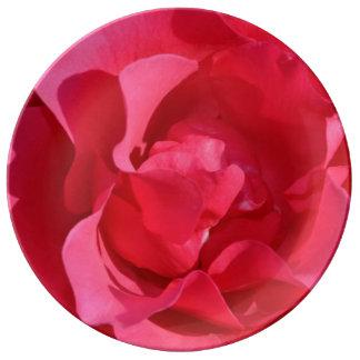 Flores color de rosa rosados platos de cerámica