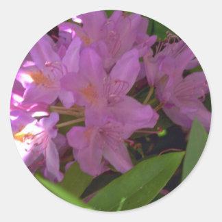 Flores coloreadas color de malva pegatina redonda