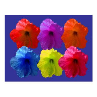 Flores coloreadas múltiplo del hibisco tarjetas postales