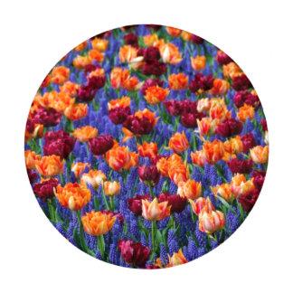 Flores coloridas bonitas del tulipán paquete pequeño de tapa botones