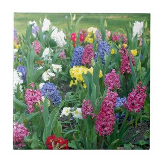 Flores coloridas de la primavera azulejo ceramica