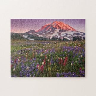 Flores coloridas en un parque nacional más lluvios puzzle con fotos
