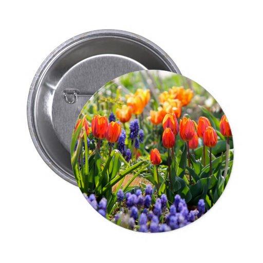 Flores coloridas pins