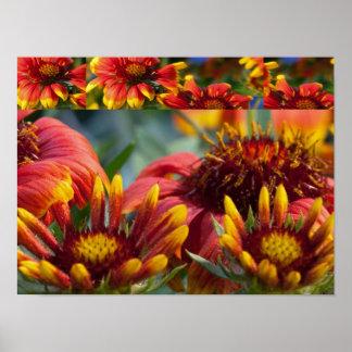 """"""" flores coloridas salvajes 16x12:  Energía positi Posters"""