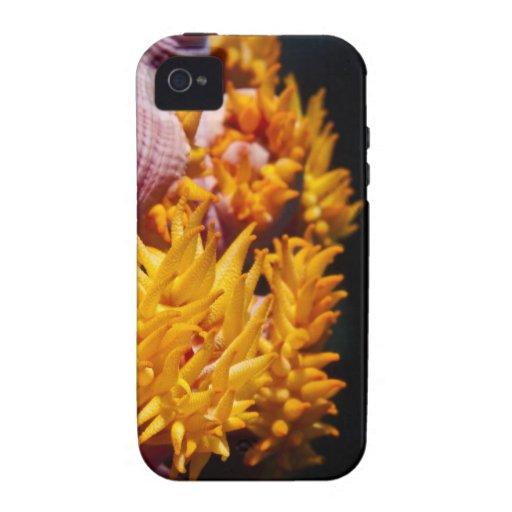 Flores coralinas rosadas y amarillas iPhone 4 funda