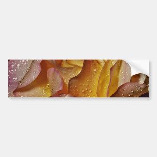 Flores cubiertas de rocio polvorientas del rosa a pegatina de parachoque