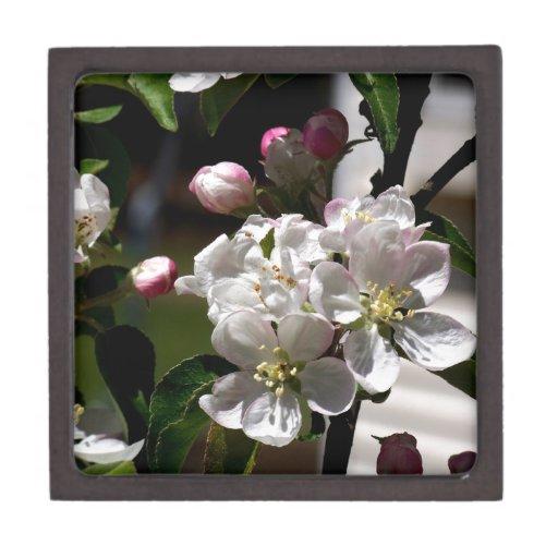 Flores de Apple Caja De Recuerdo De Calidad