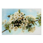 Flores de Apple del vintage Póster