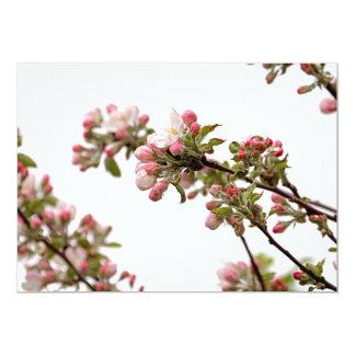 Flores de Apple en primavera Comunicado Personal