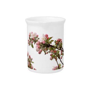 Flores de Apple en primavera Jarra