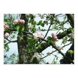 Flores de Apple Invitación 12,7 X 17,8 Cm
