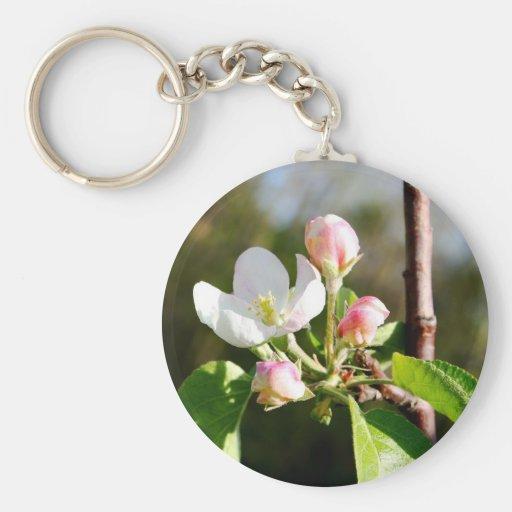 Flores de Apple Llaveros
