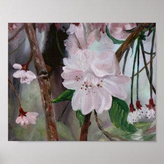 Flores de Apple Poster