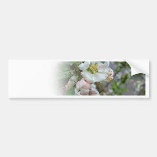 Flores de Apple que se descoloran lejos Pegatina Para Auto