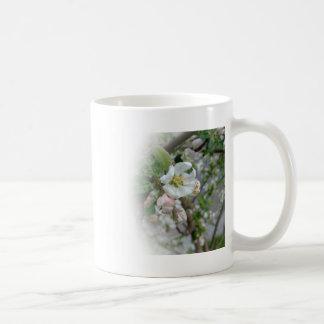 Flores de Apple que se descoloran lejos Tazas De Café