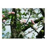 Flores de Apple Tarjetas Personales
