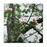 Flores de Apple Teja