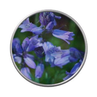 Flores de Bell azules bonitas Latas De Dulces