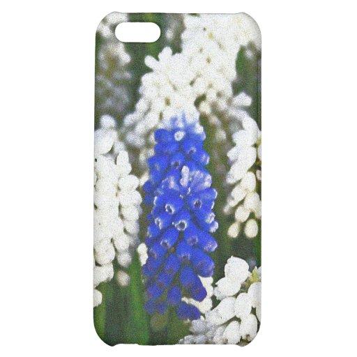 Flores de Bell blancas y azules