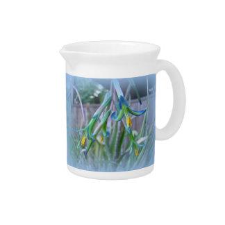 Flores de Bromeliad en azul Jarra De Beber