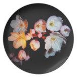 flores de cerezo, 桜, placa plato