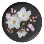 flores de cerezo, 桜, placa plato de cena