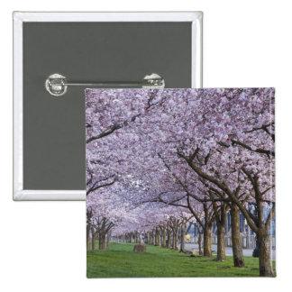 Flores de cerezo a lo largo del río de Willamette, Pin Cuadrada 5 Cm