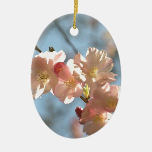 Flores de cerezo adornos