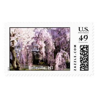 Flores de cerezo Belleville, NJ Sello Postal