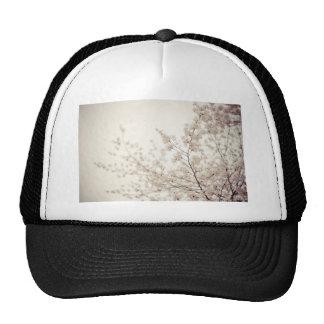 Flores de cerezo blancas - primavera del Central P Gorras De Camionero