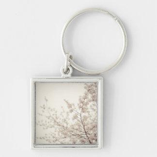 Flores de cerezo blancas - primavera del Central P Llavero Cuadrado Plateado