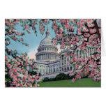 Flores de cerezo de Capitol Hill del Washington DC Felicitacion