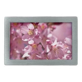 Flores de cerezo de Sakura besadas por la luz del Hebilla De Cinturon Rectangular