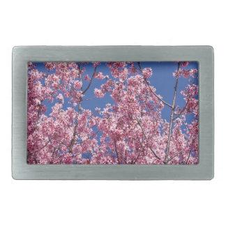 Flores de cerezo de Sakura en el azul Hebilla Cinturon Rectangular