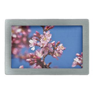 Flores de cerezo de Sakura que tocan el azul Hebilla Cinturón Rectangular