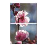 Flores de cerezo en el arte del tríptico de la sol impresiones de lienzo