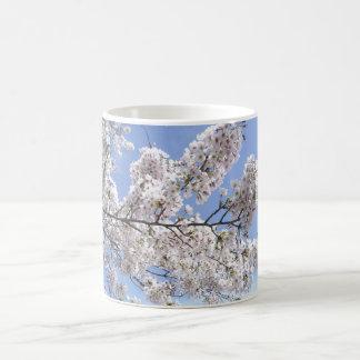 Flores de cerezo en Japan Cup Tazas De Café
