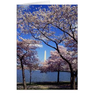 Flores de cerezo en la C.C. de Washington Tarjeta Pequeña