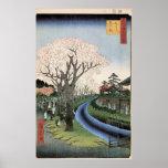 Flores de cerezo en los bancos del río de Tama Poster