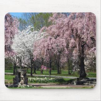 Flores de cerezo en Philadelphia Mousepad
