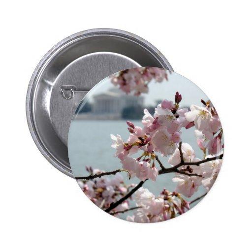 Flores de cerezo en Washington DC Pin