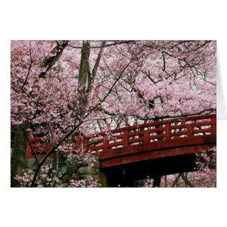 Flores de cerezo (espacio en blanco dentro) tarjeta pequeña