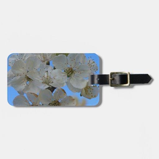 Flores de cerezo etiquetas maleta