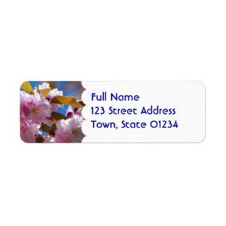 Flores de cerezo florecientes etiquetas de remite