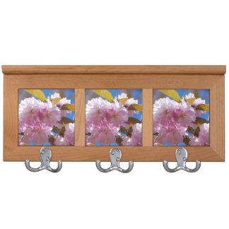 Flores de cerezo florecientes