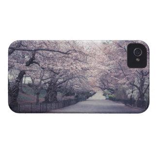 Flores de cerezo Case-Mate iPhone 4 protectores